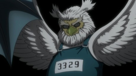 hunter-x-hunter-evil-owl-wearing-suspenders