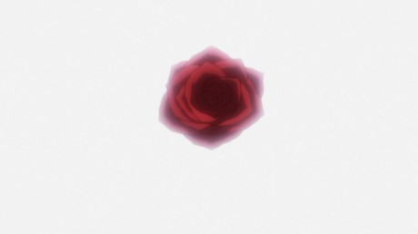 hunter-x-hunter-blooming-rose